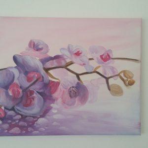 Рисувани орхидеи