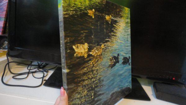 "Картина ""Гъски"" - маслени бои"