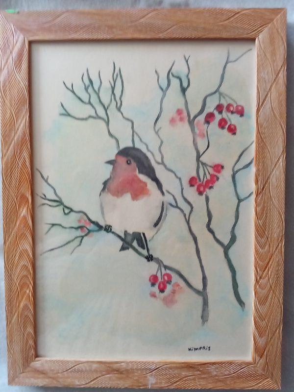 Червеногръдка